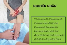 Nguyen Nhan Viem Vung Chau
