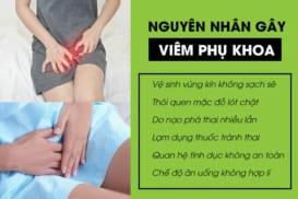 Nguyen Nhan Gay Viem Phu Khoa(1)