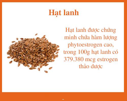 Hat Lanh Tang Noi Tiet To