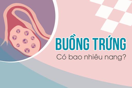 Buong Trung Co Bao Nhieu Nang