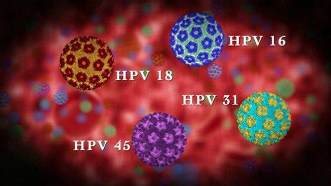 Virus Hpv Sinh Duc La Gi
