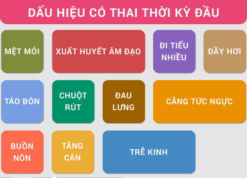 Cach Kiem Tra Co Thai